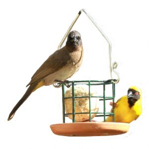 Suet Ball Feeder (Terracotta)