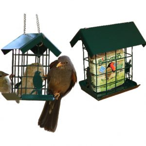 Suet Slab Feeder (Metal)