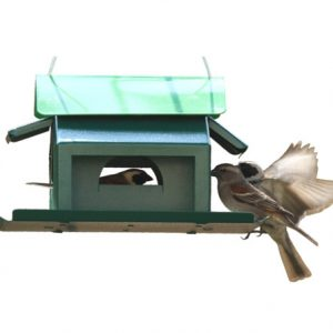 Bird Seed House
