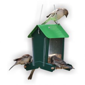 Easy Perch Seed Feeder