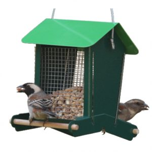Easy Perch Peanut feeder