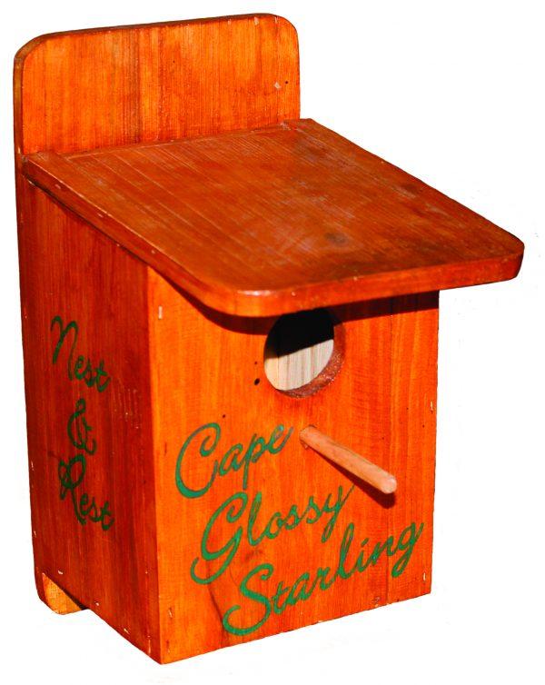 Cape Glossy Box