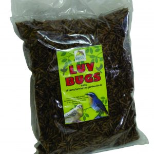Luv Bugs 500g