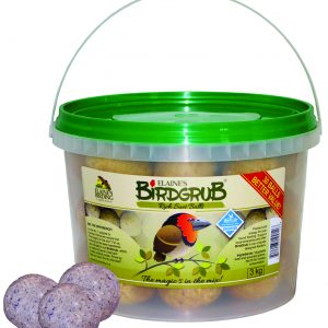Bird Grub Suet balls mini bucket